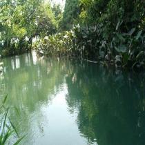 Río Zarco