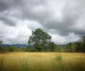 Guastatoya, El Progreso