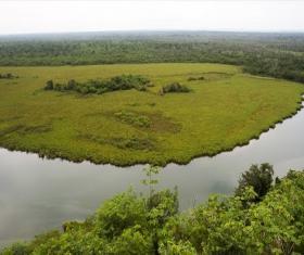 Biotopo Laguna del Tigre -Río Escondido-