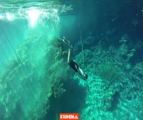 Cenotes de Candelaria y LAGUNA BRAVA con sus 3 cenotes