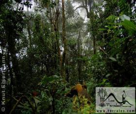 Reserva Natural Los Tarrales