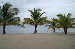 Bahía Francisca y Estero Lagarto