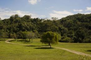 Parque Nacional Privado Guayaja