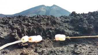 Tour Programado Volcán Pacaya de día