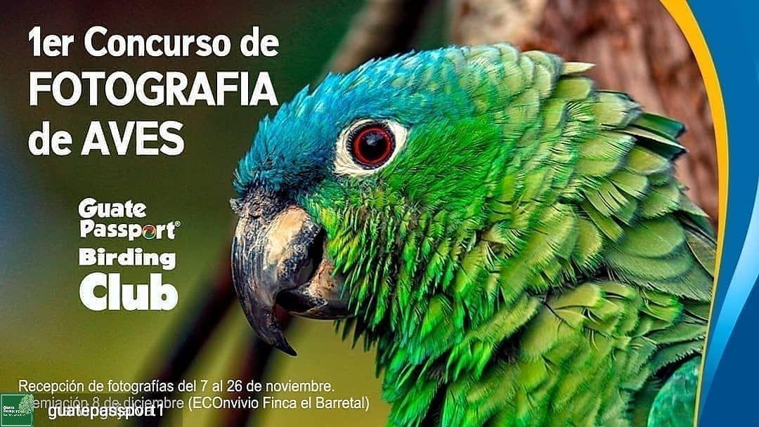 1er Concurso de Fotografía de Aves