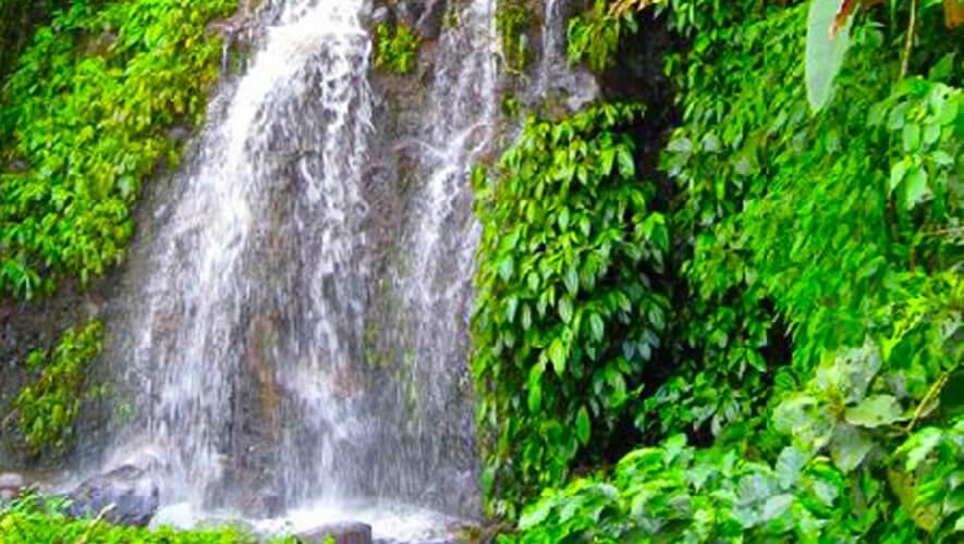 Reserva Natural Finca Santa Elena