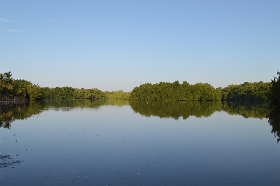 Reserva Manchón Guamuchal