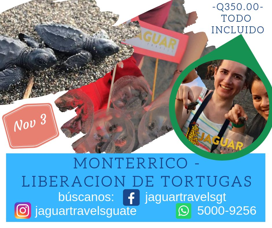 Liberación de tortugas en Monterrico - todo incluido -