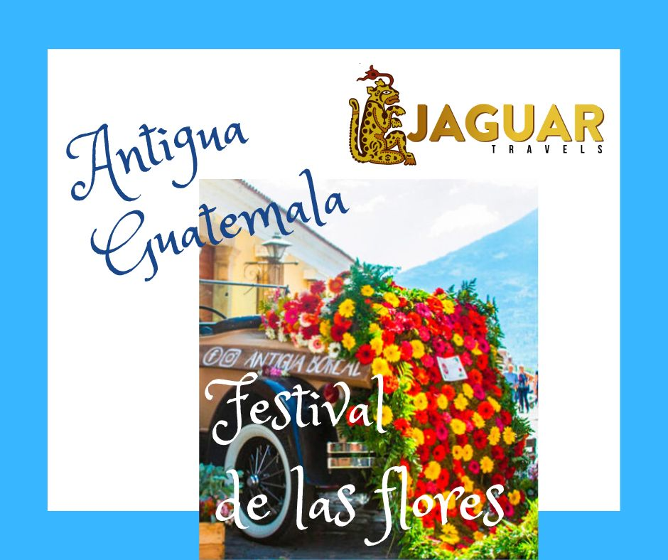 Tour del Nispero y Festival de Flores