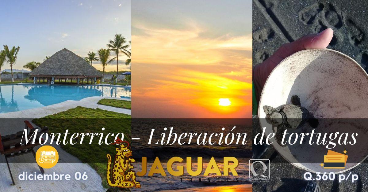 Liberacion de tortugas en Monterrico